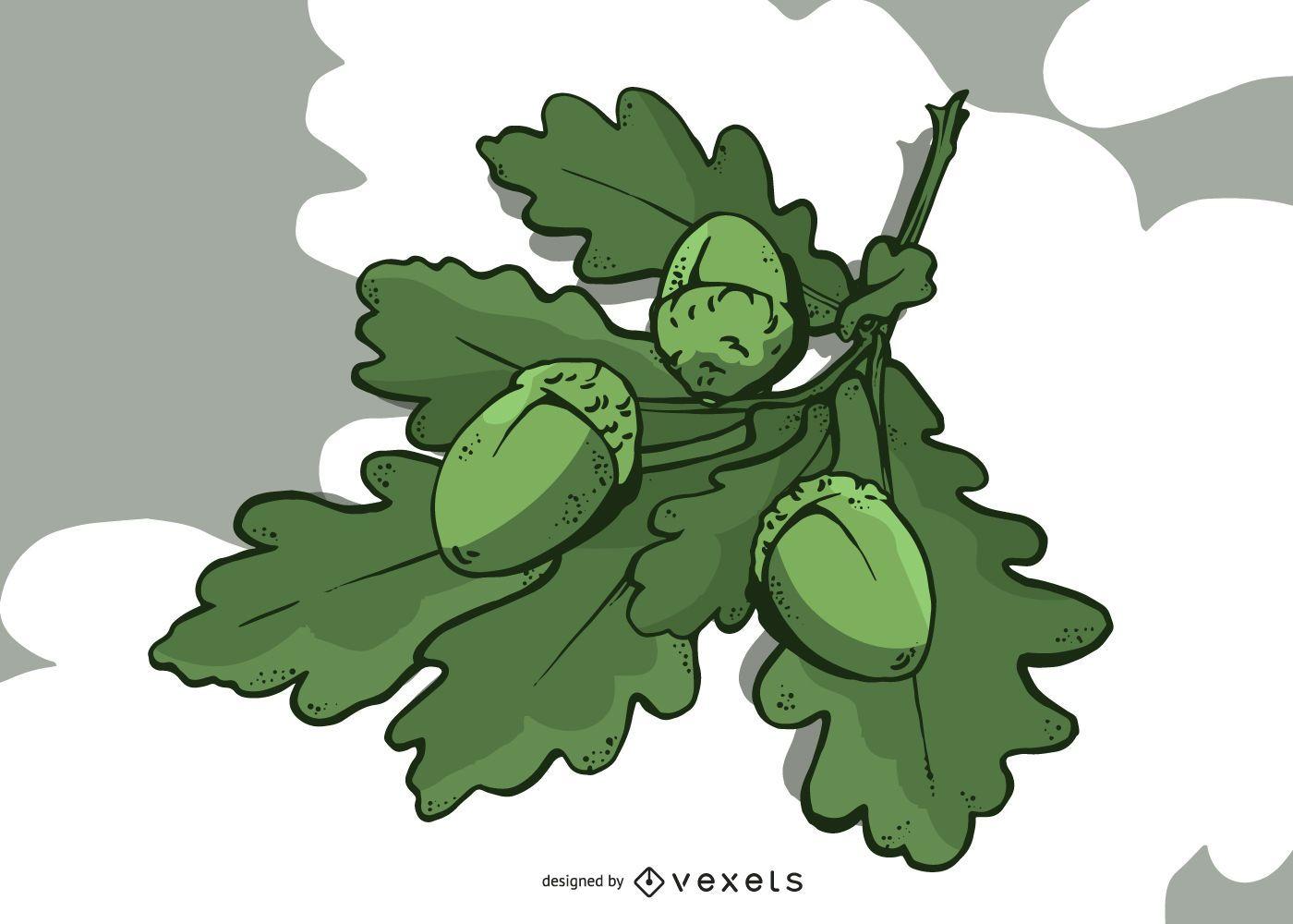 Oak Leaves and Acorn Illustration Design