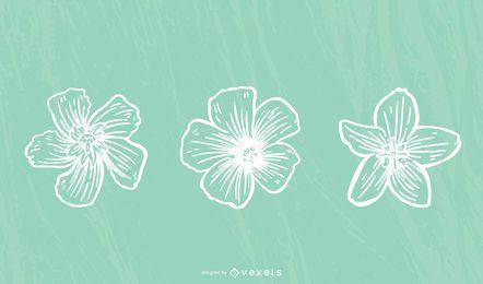 Trazo de flor de hibisco
