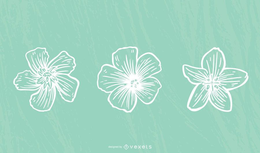 Hibiscus Flower Stroke