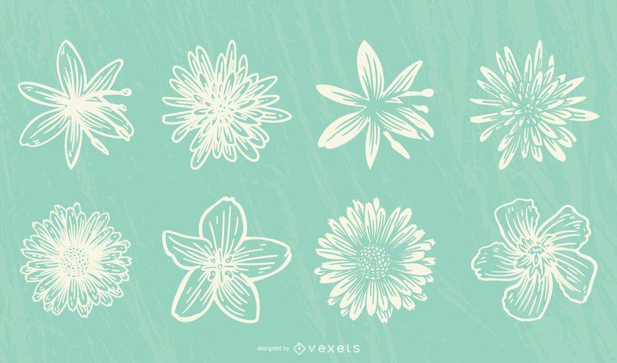 Mão desenhada flores coleção