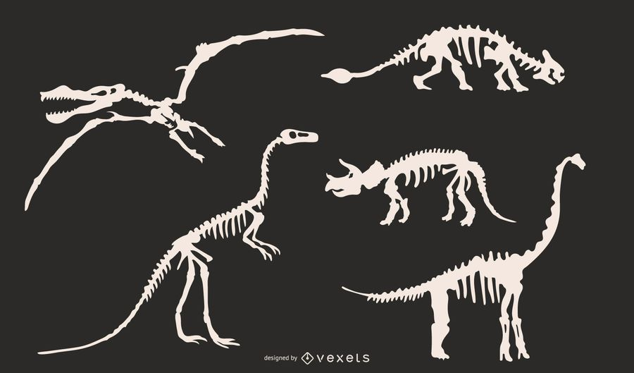 Dinosaur skeleton silhouettes set