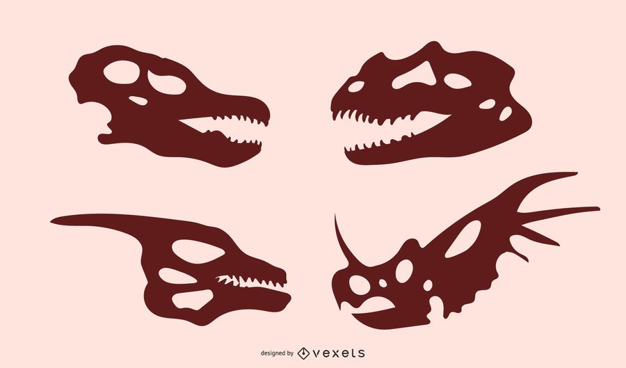 Siluetas de cráneo de dinosaurio