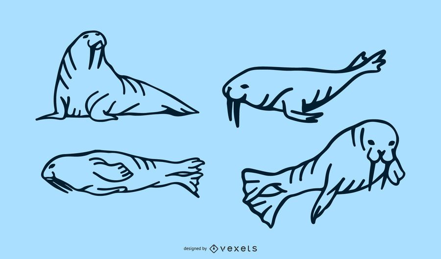 Walross-Doodle-Set