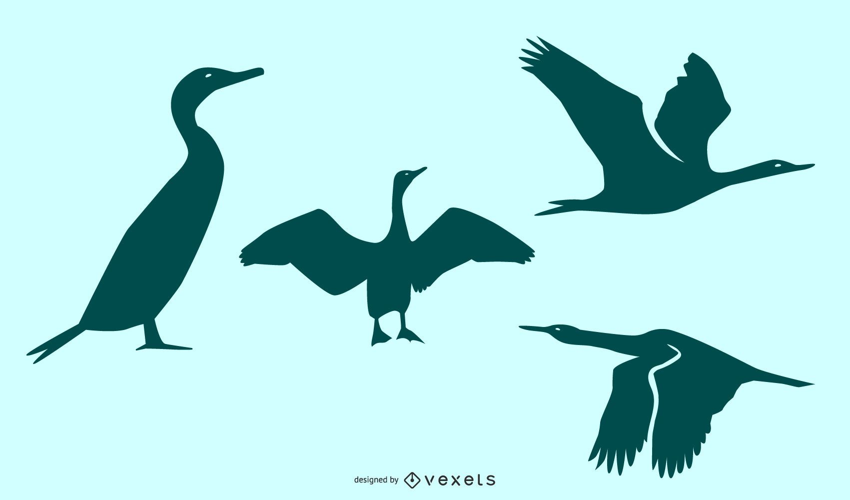 Conjunto de silueta de pájaro cormorán