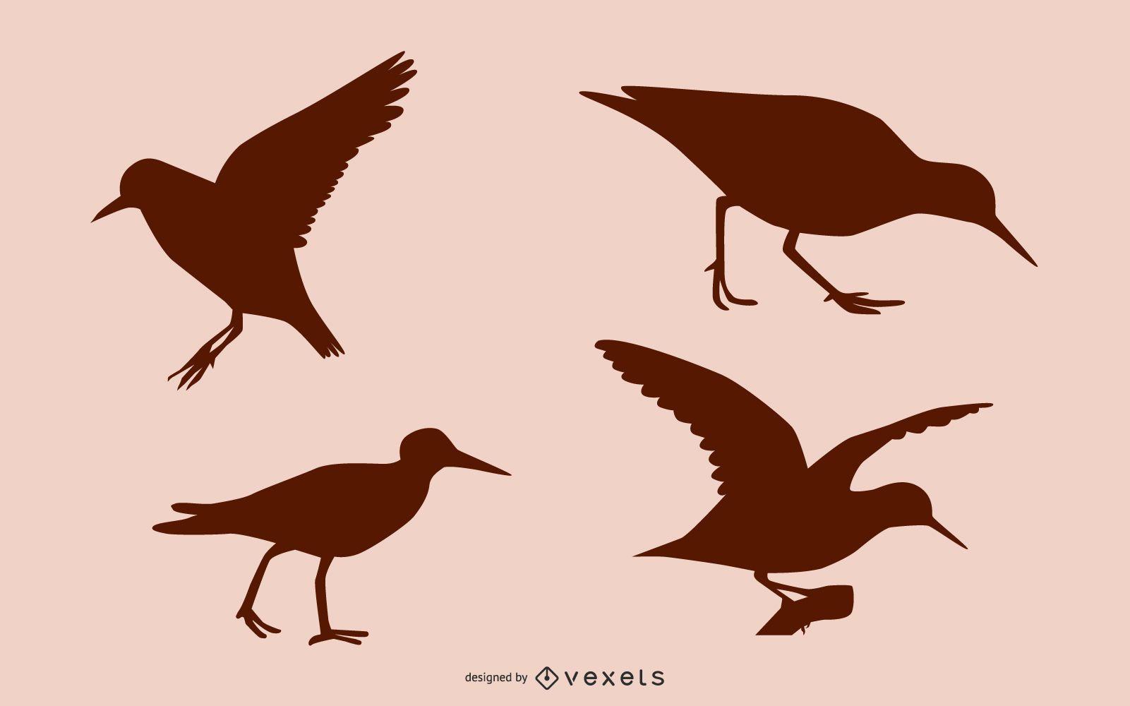 Sandpiper bird silhouette set