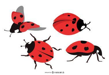 Conjunto de ilustração de inseto bonito para senhora