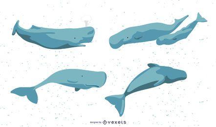 Conjunto de ilustração de baleias