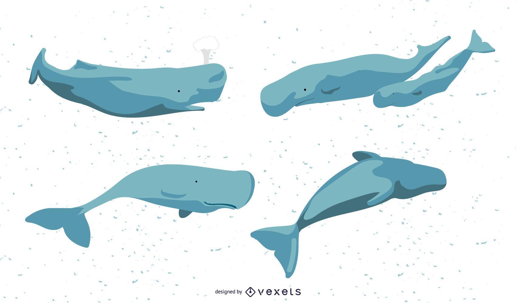 Conjunto de ilustración de ballenas