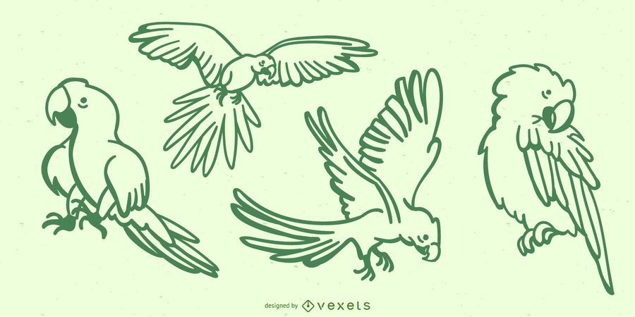 Niedliche Papageien-Gekritzel-Sammlung