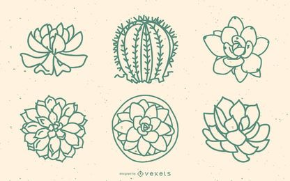Succulents outline set