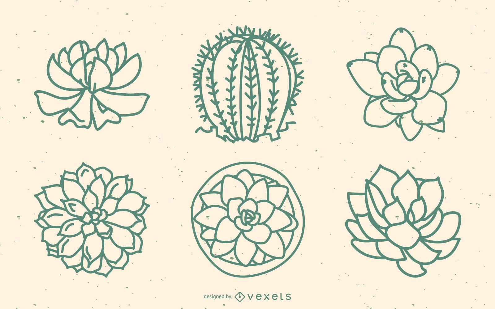 Succulents outline set