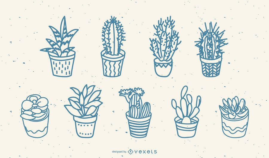 Hand drawn cacti set