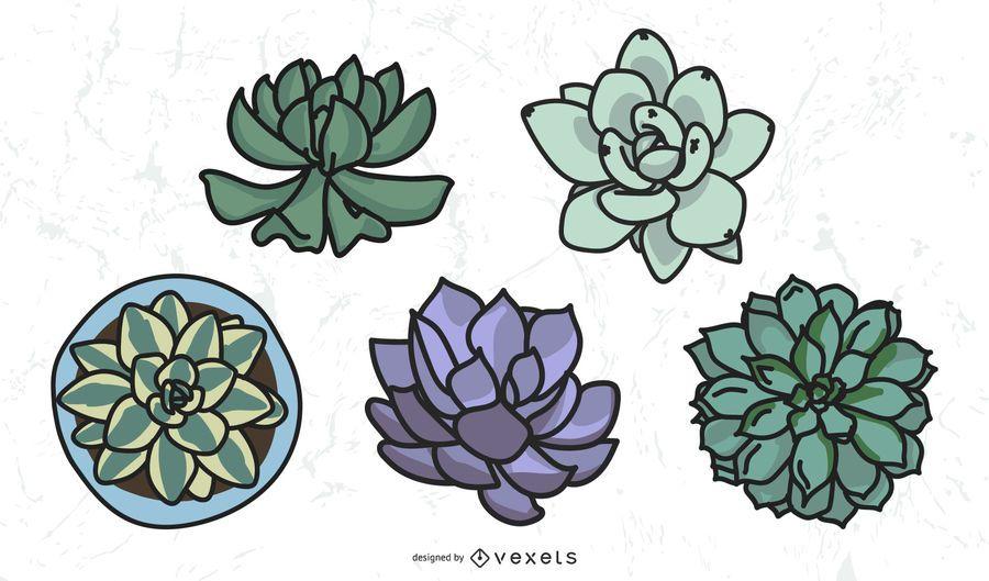 Colored cacti set