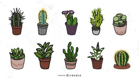Succulents vector collection