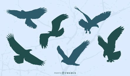 Conjunto de silhueta voadora de águia