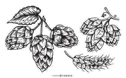 Conjunto de ilustración de elementos de lúpulo de cerveza