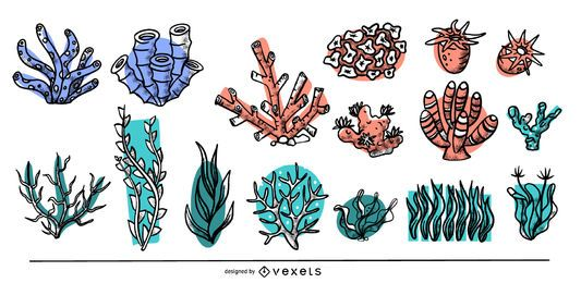 Coleção de algas coloridas