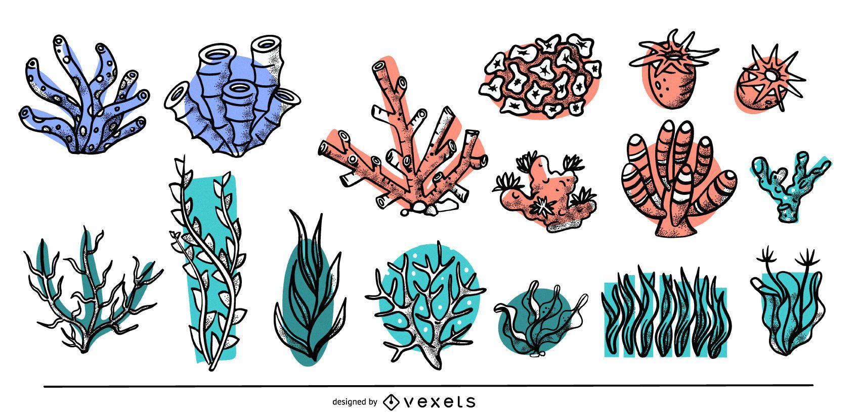 Colección de algas de colores