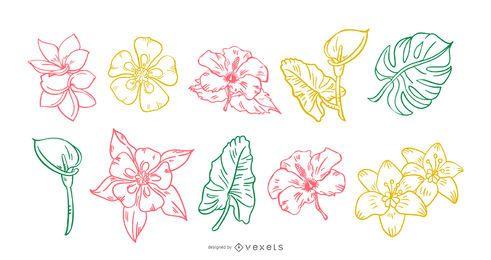 Conjunto de traços desenhados à mão de flores tropicais