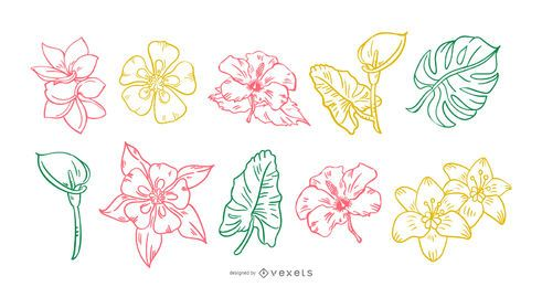 Tropical Flower Handdrawn Stroke Set