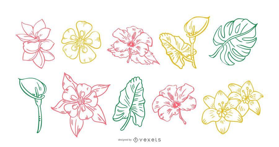 Tropical Flower Handdrawn Stroke Set