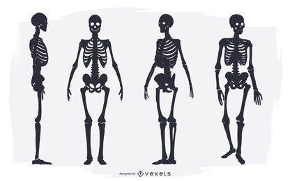 Skelett Silhouette gesetzt