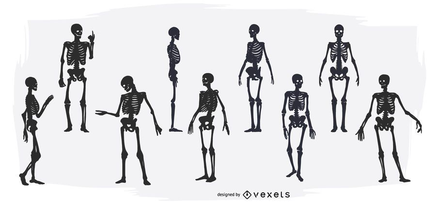 Conjunto de silueta esqueleto