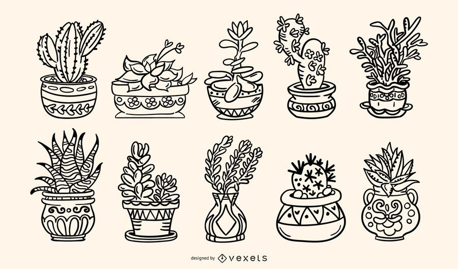 Succulent Plants Handdrawn Stroke Illustration Pack