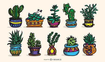 Colección de ilustraciones coloreadas de plantas suculentas