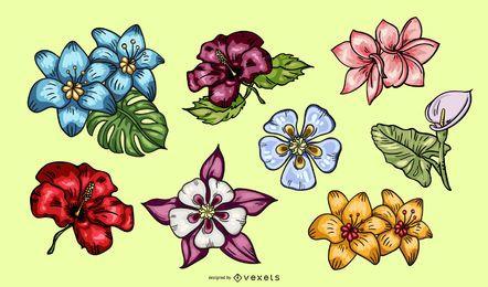 Tropische Blumen-Illustrations-Satz