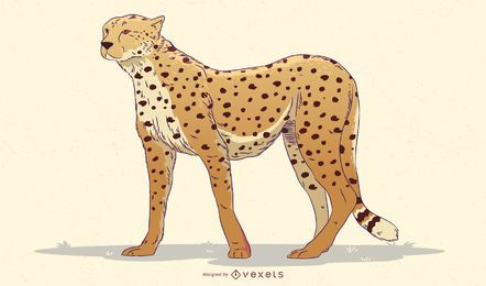 Cheetah illustration design