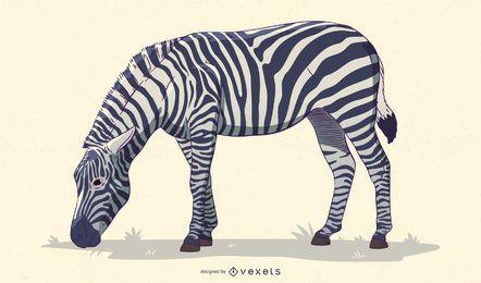 Desenho de ilustração de zebra