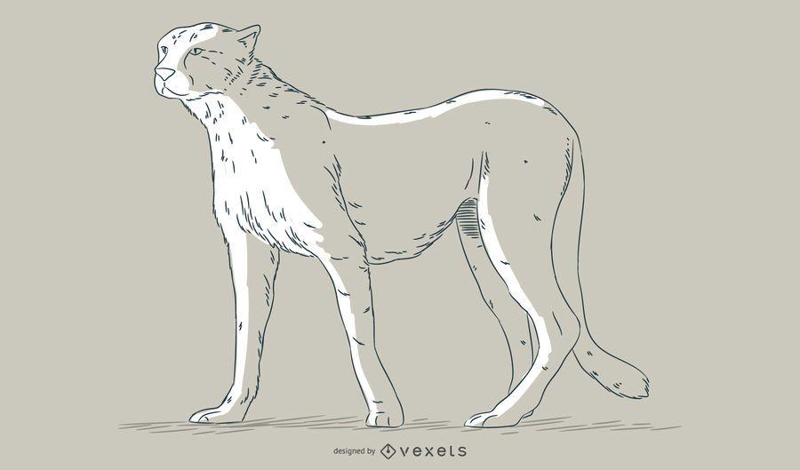 Ilustración de dibujado a mano de guepardo