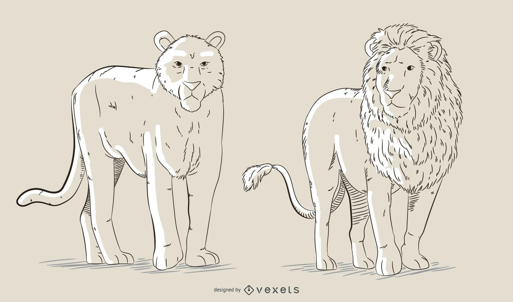 Hand drawn felines vector set