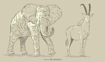 Conjunto de animales dibujados a mano