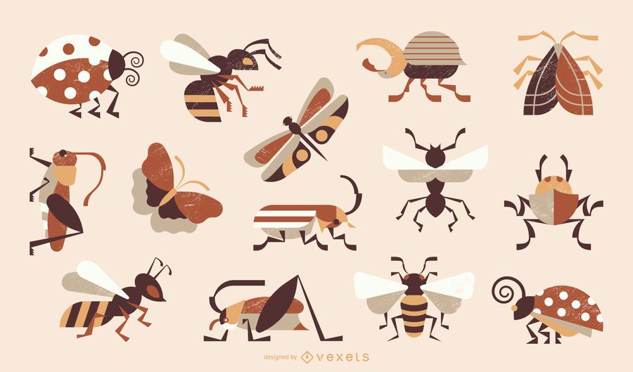 Insects Geometric Style Colored Collection
