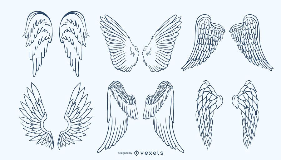 Set de alas dibujadas a mano