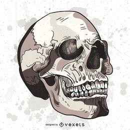 Ilustração de caveira grunge