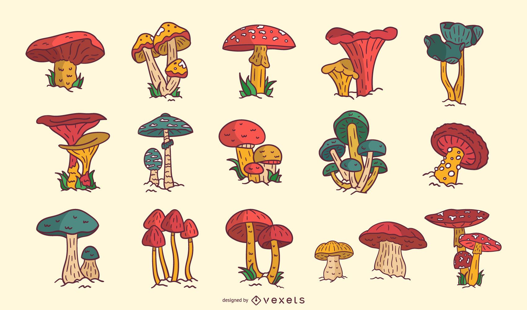 Colorful mushrooms collection