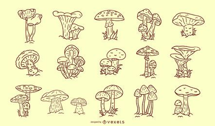 Stroke mushrooms collection