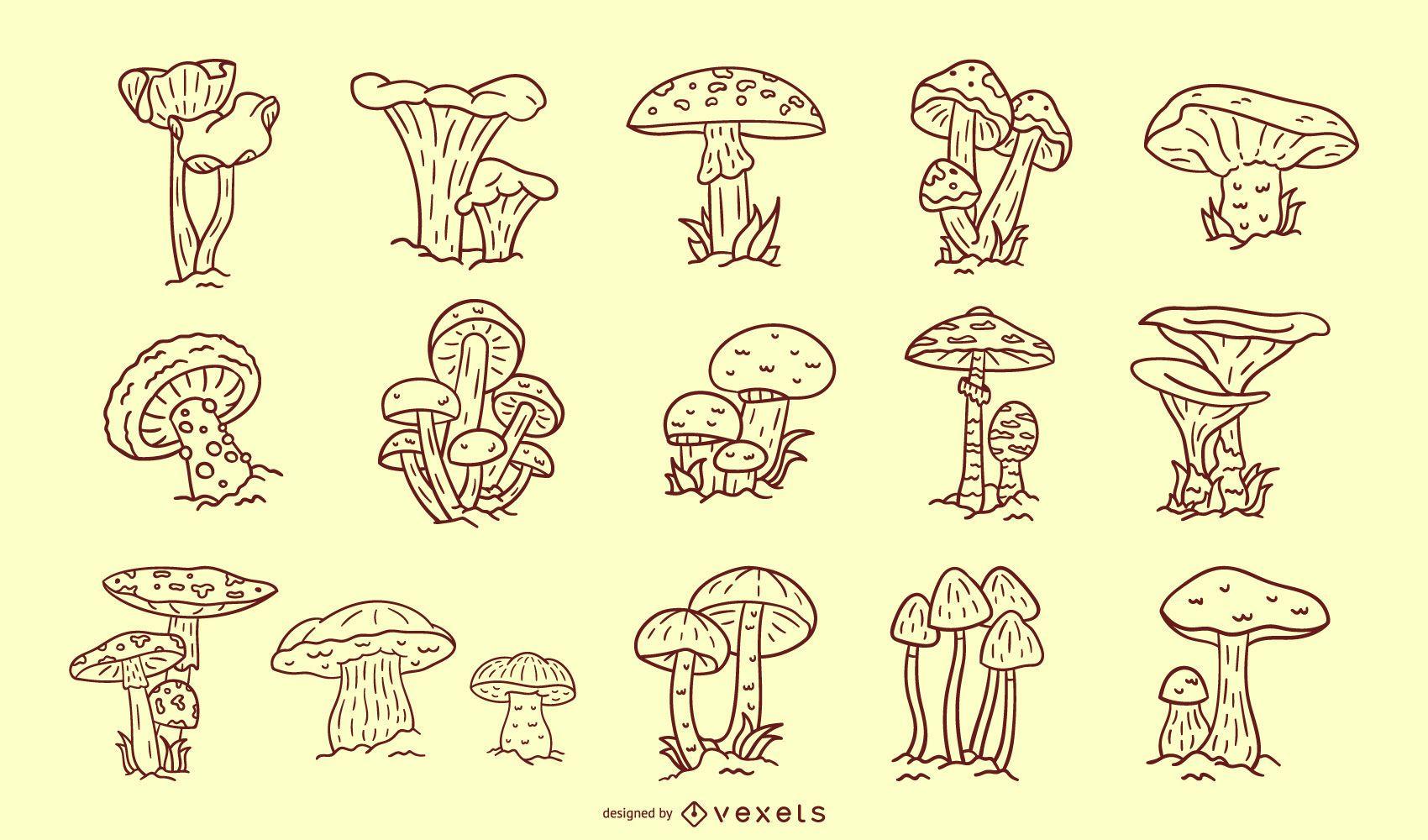 Cole??o de cogumelos derrame