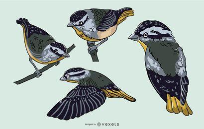 Conjunto de ilustración realista pájaro azul
