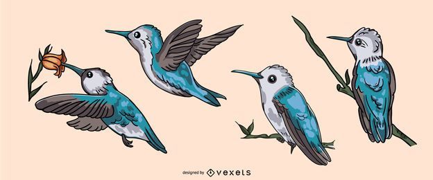 Conjunto de ilustração realista de beija-flor