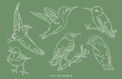Conjunto de trazo de pájaros realistas
