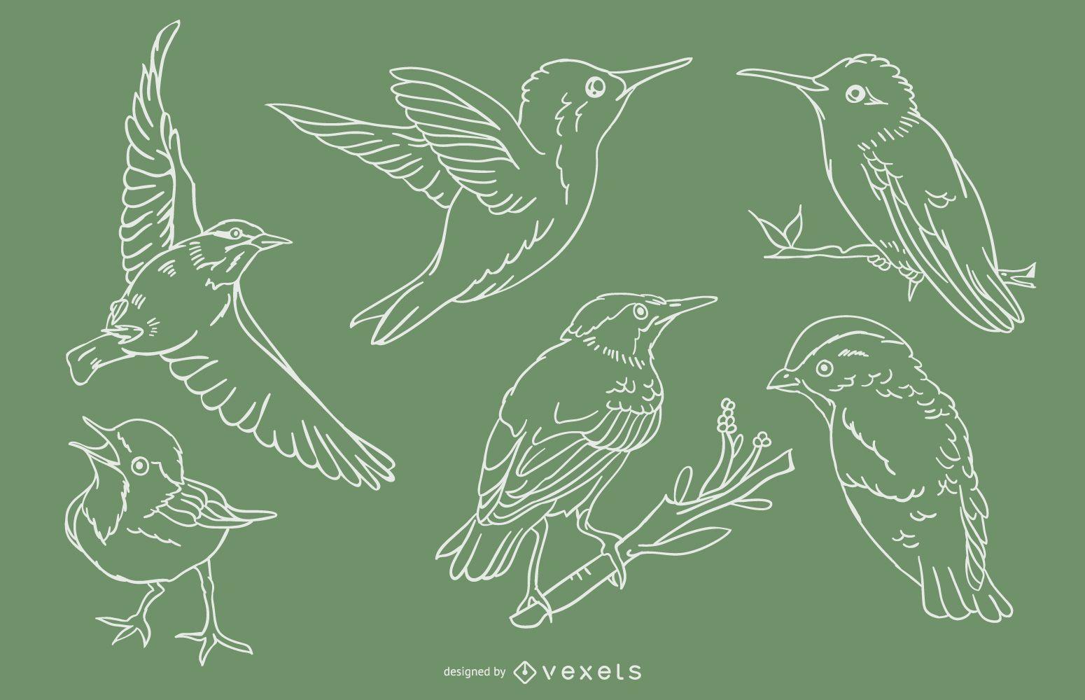 Conjunto de trazos de pájaros realistas