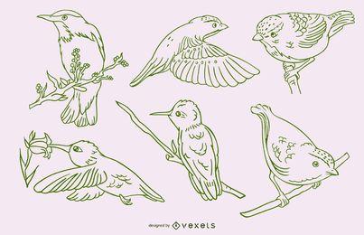Realistische Vögel streicheln grünen Satz