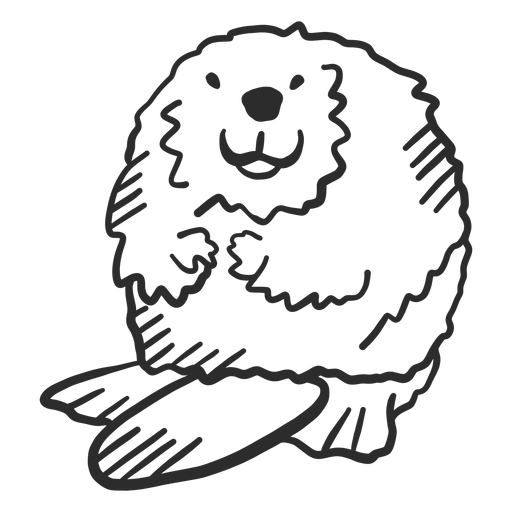 Beaver tail rodent fat doodle animal Transparent PNG