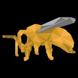 Abelha perna vespa asa baixo poli inseto