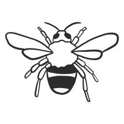 Bienenwespe Streifenflügel Gekritzel Insekt