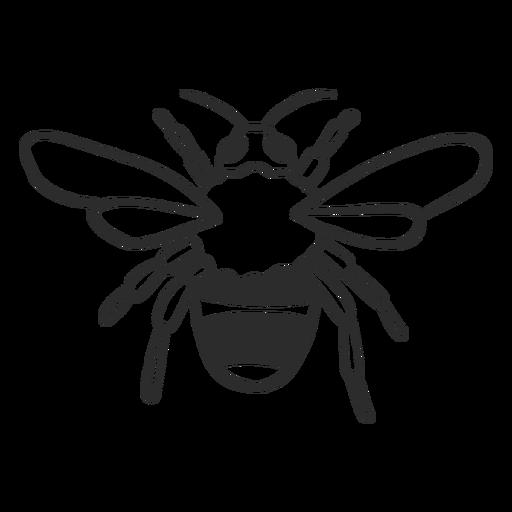 Abeja avispa raya ala doodle insecto Transparent PNG